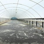 Production Systems in Biofloc Aquaculture