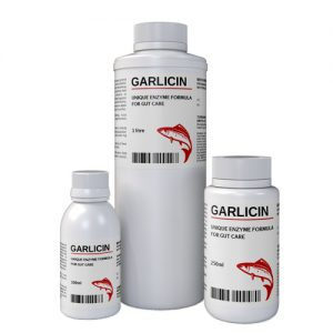 Garlicin (Natural substances for healthy digestion and absorption.)