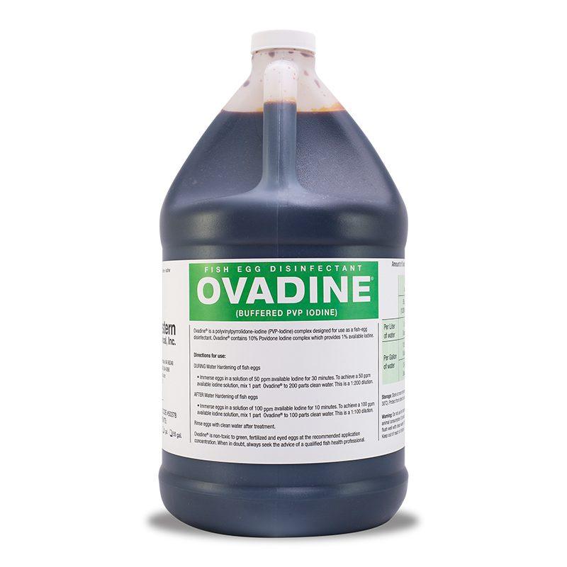 Ovadine (Buffered PVP Iodine)